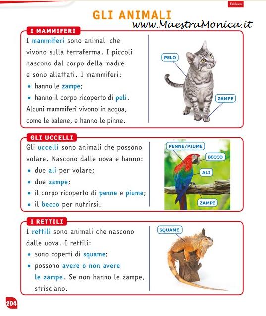 I Vertebrati Un Lapbook Scienze Classe 3 Maestramonica